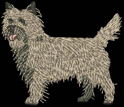 Cairn Terrier Dog Digital File